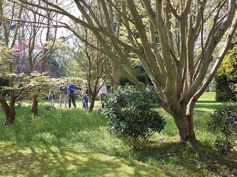 Sidmouth Arboretum