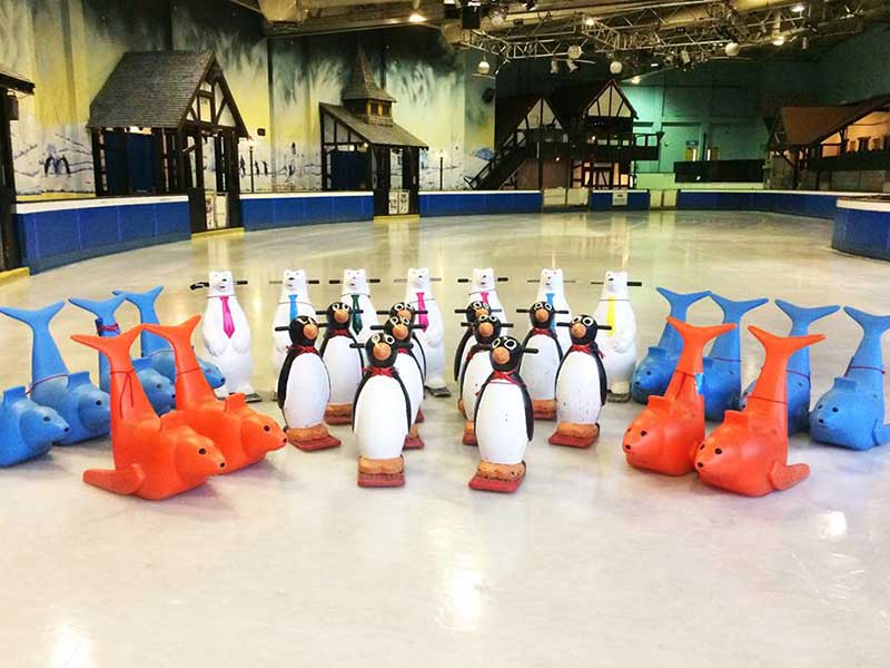 Plymouth Pavillions Ice Rink