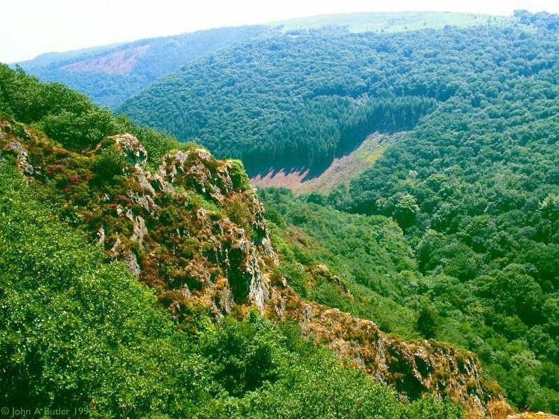 Explore the Teign Gorge