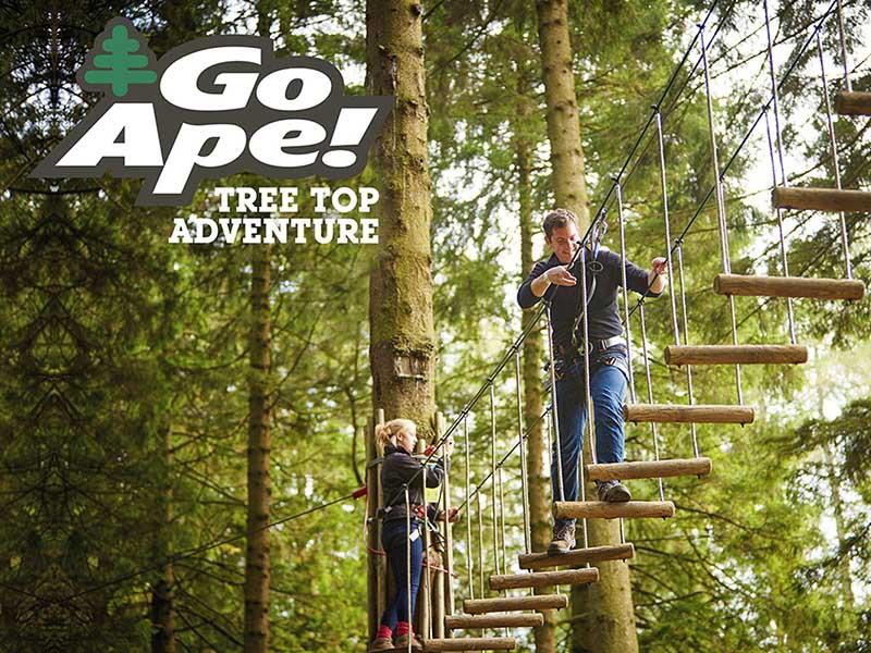 GoApe Haldon Forest